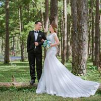 Bộ ảnh cưới Đà Lạt nhẹ nhàng trong rừng thông
